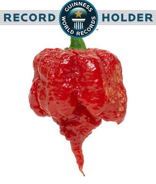 Guinnessova knjiga rekorda