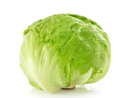 Sjeme salate Iceberg