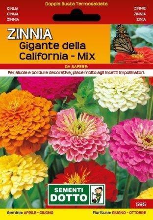Sjeme cinija californija mix