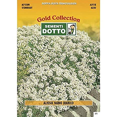 Sjeme Kamenita trava bijela