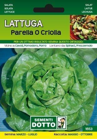 Sjeme salata Perella
