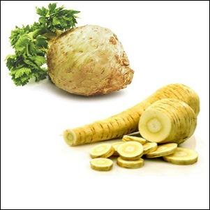 Celer&Pastrnjak